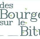 Bourgeons