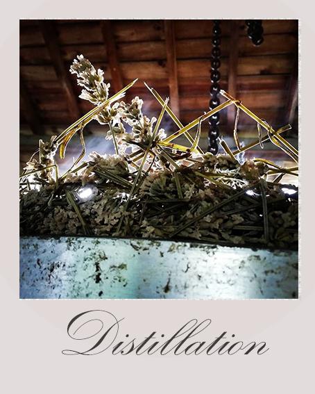 disstillation